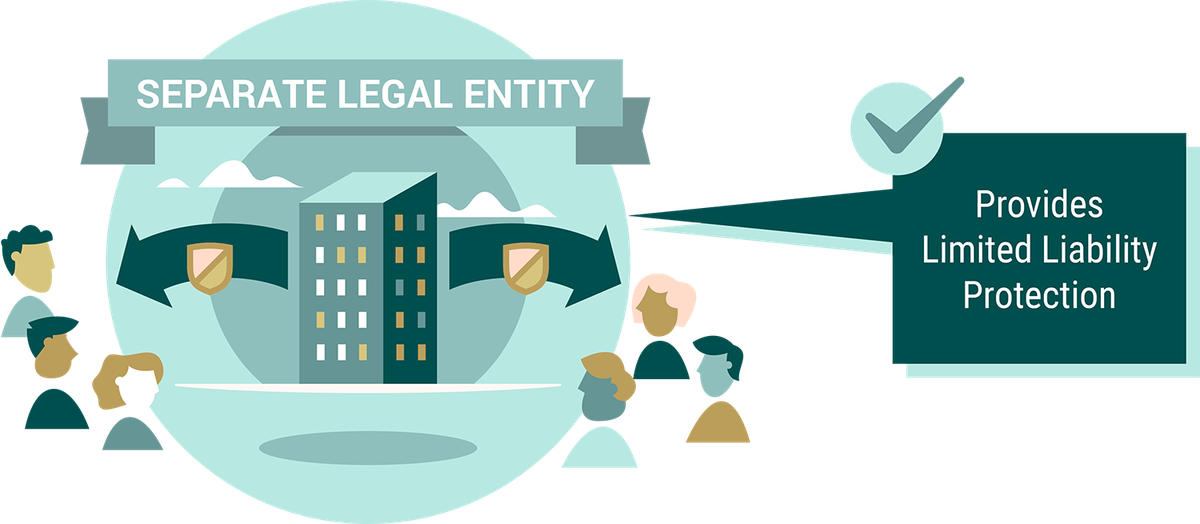 DST Guide - Ch 02 - Separate Legal Entity